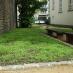 Es grünt so grün – Kirchgarten erwacht